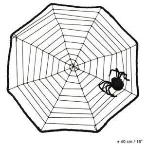Паутина натянутая с пауком